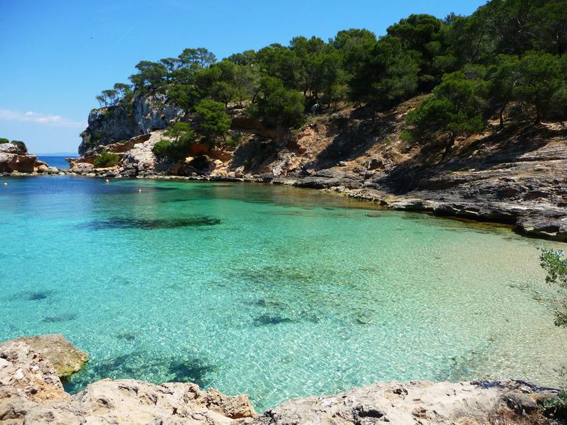 Detectan un aumento de la concentración de Ácido Úrico en las aguas de las Islas Baleares