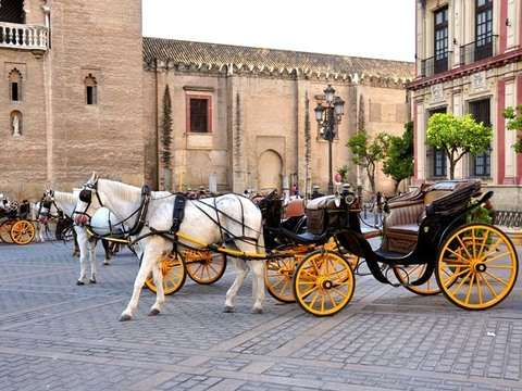 Essence of Seville