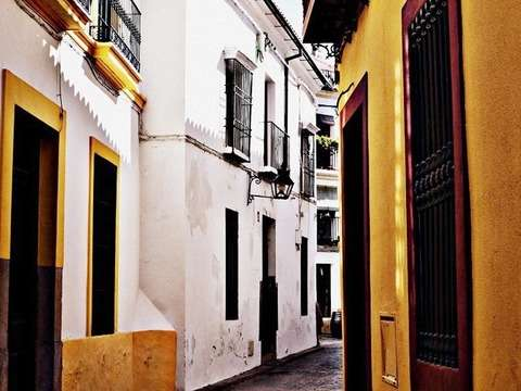 Callejas and Patios de Córdoba