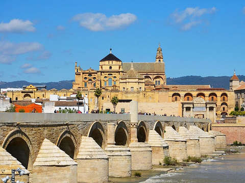 Córdoba, Sevilla, and Costa del Sol, 3 Days from Madrid