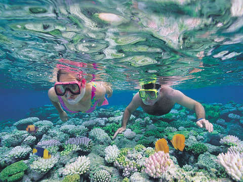 Snorkeling in Caleta de Fuste