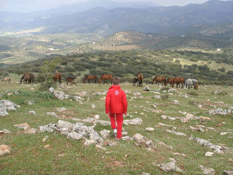 Visita a la Yeguada de Domingo Chinchilla