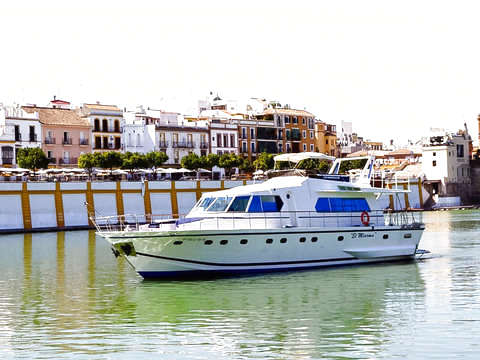 Luxury Boat Tour in Seville by the Guadalquivir