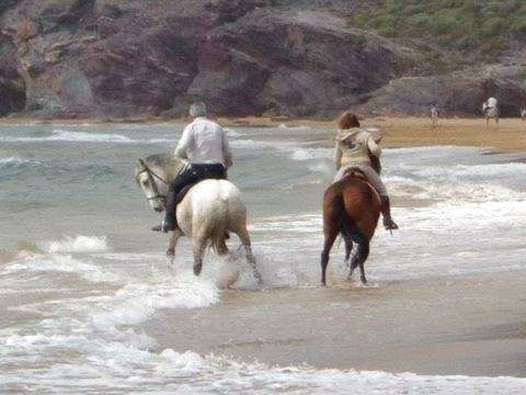 Horse Riding - Cartagena