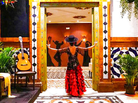 Triana: Flamenco Show + Drink