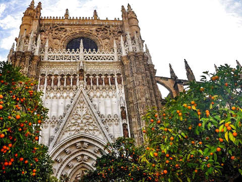 Seville: Route to the Cathedral