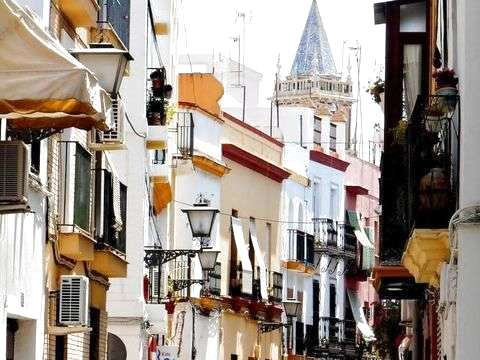 Seville: Private Sensations Tour