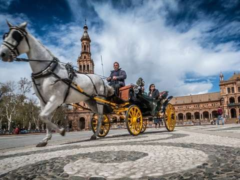 Sevilla: Travel the City by Horse Car (For 4 Pers)