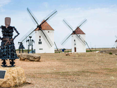 Don Quixote Experience: Mills, Castle and Gastronomy