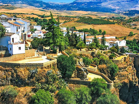 White Villages and Ronda in 1 Day from Sevilla-Toros Bravos