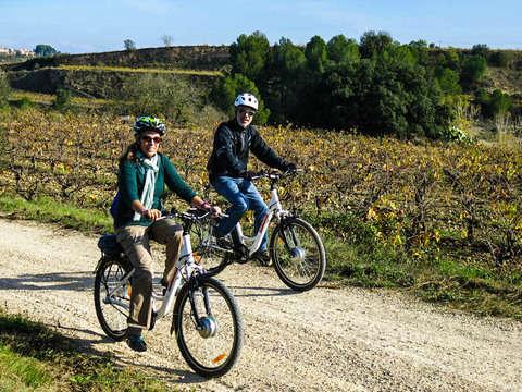 Ruta en Bici Eléctrica + Visita a Bodega Con Cata de Vinos